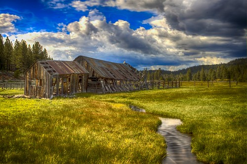 old green grass barn overcast hdr truckee