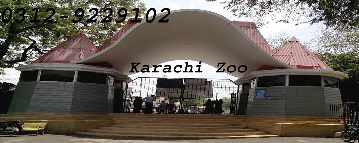Karachi Zoo 2