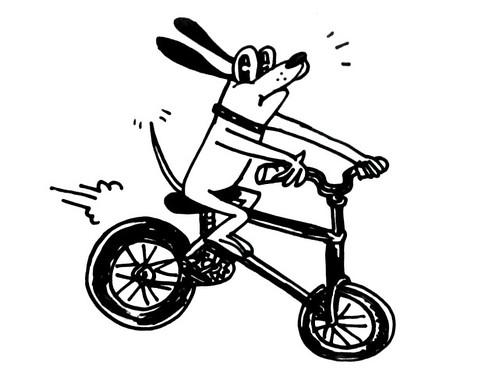 ridingdog