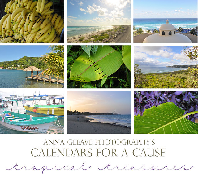 calendartropical