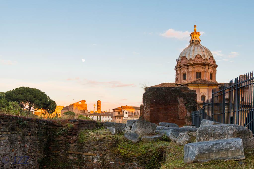 Rome Forum (4)