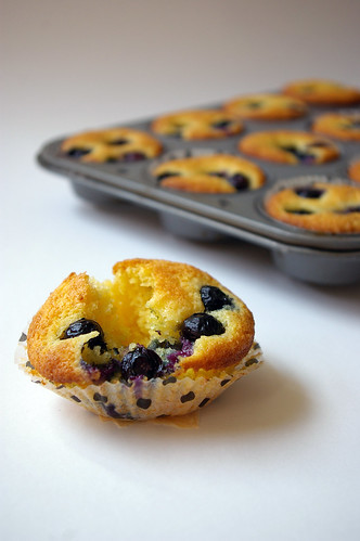 Blueberry Cornmeal Muffins IV
