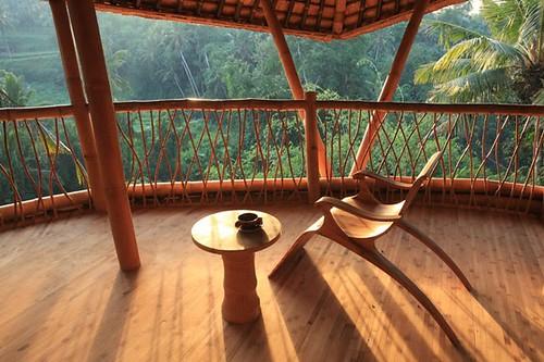 Bambus House v05