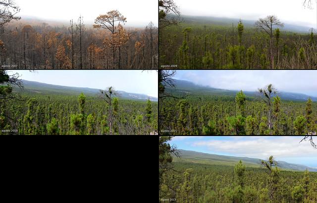 071 2007-09-10-11-13.Recorrido por incendio Tenerife 2007