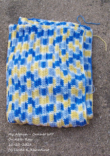 100_8926 - My Afghan - Crochet WIP - on 48th Row - 10-20-2013