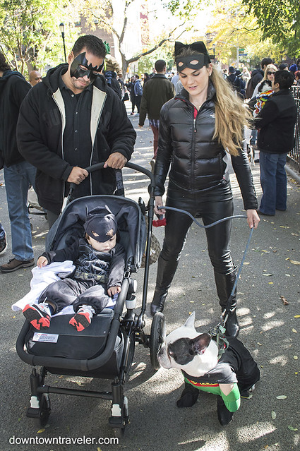 Halloween Dog Costume_Batman Family_Apollo French Bulldog