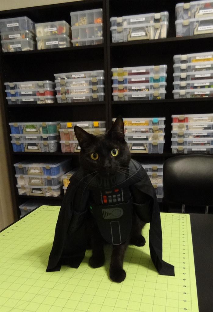 Lego Room Mascot