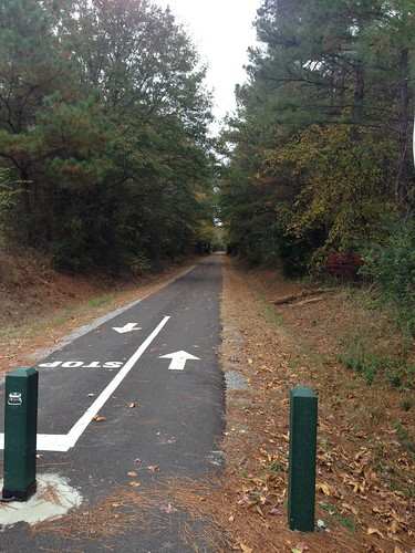 How can cyclists and dog walkers best share multi-use trails?