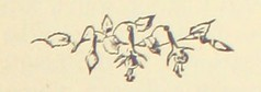 Image taken from page 317 of 'The Illustrated History of England ... Comprising also a summary of the history of the nations of Europe ... With ... engravings ... Edited by H. W. D'