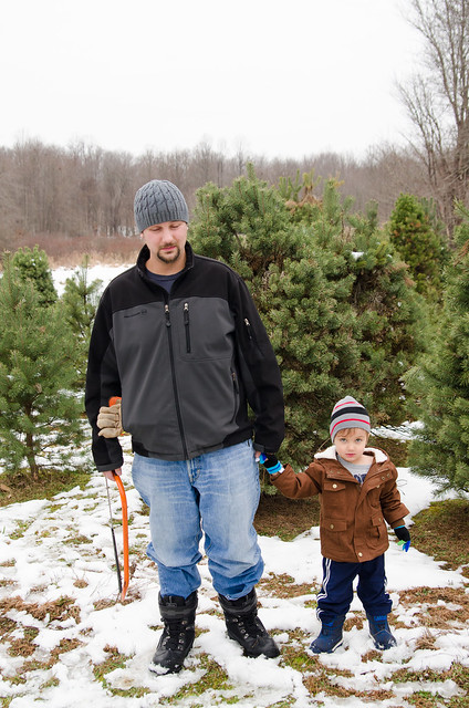 20131201-Cutting-a-Christmas-Tree-2108