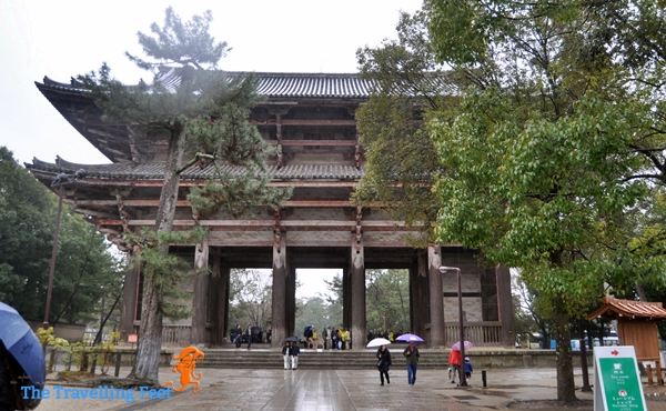 the view of the Nandaimon Gate from inside
