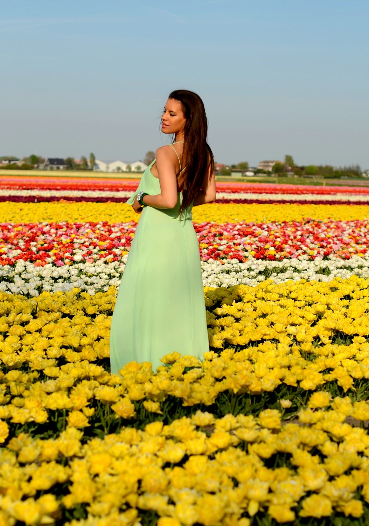 DSC_9271 tulips fields Lisse, Mint Zara dress, Myca couture