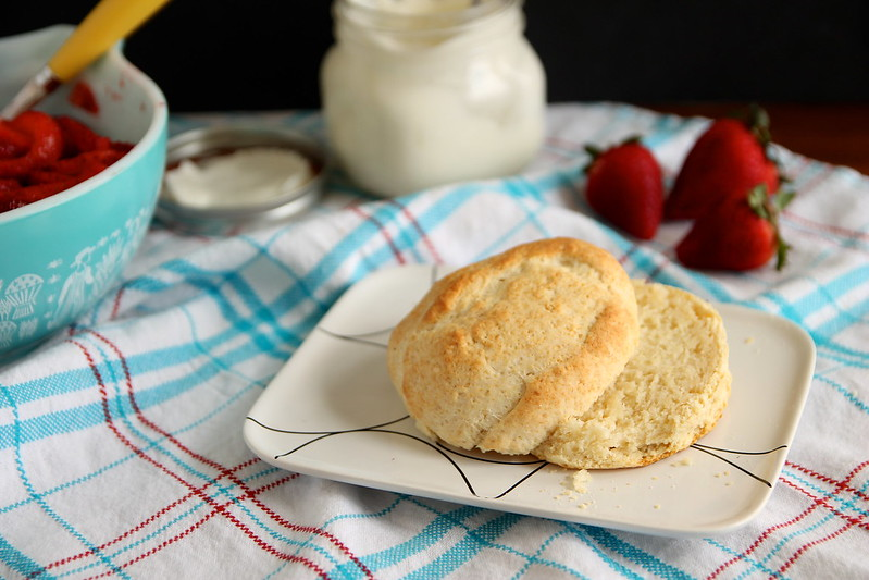 Components for classic shortcake