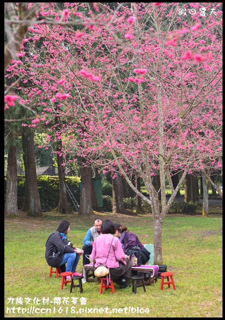 九族文化村-櫻花茶會DSC_4233