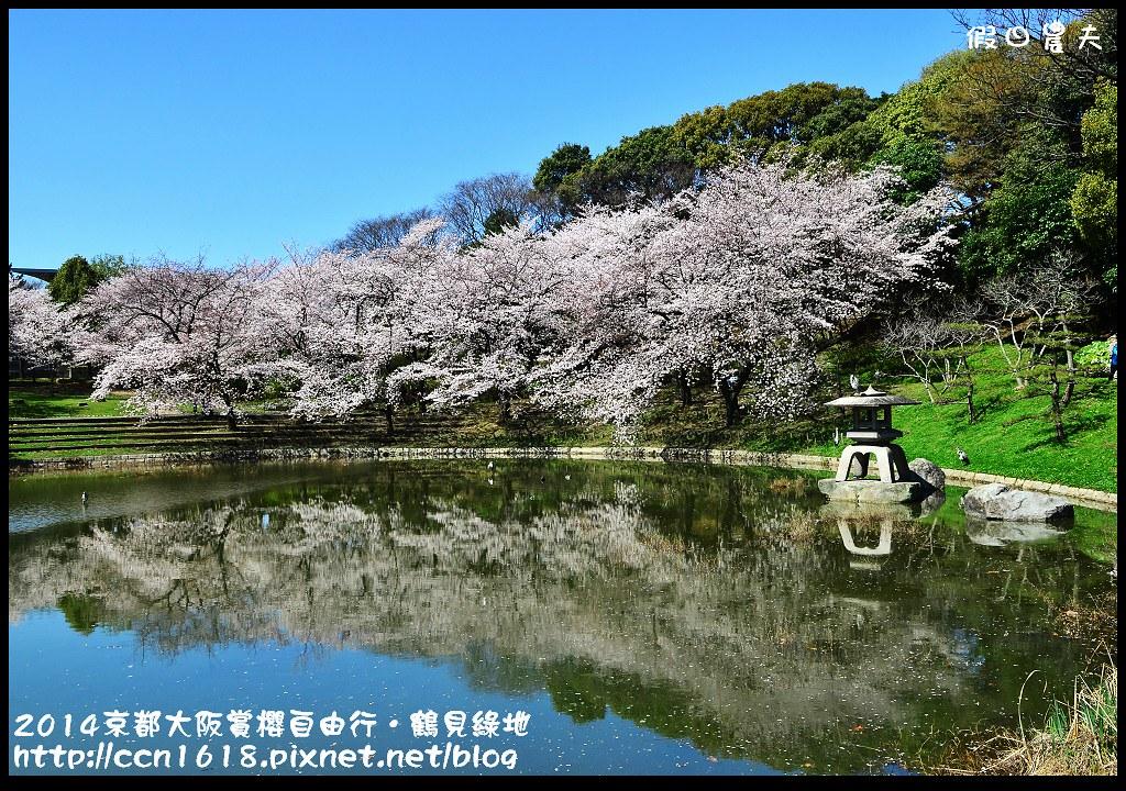 2014京都大阪賞櫻自由行.鶴見綠地DSC_1444