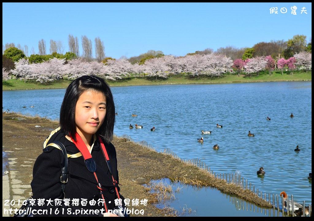 2014京都大阪賞櫻自由行.鶴見綠地DSC_1229