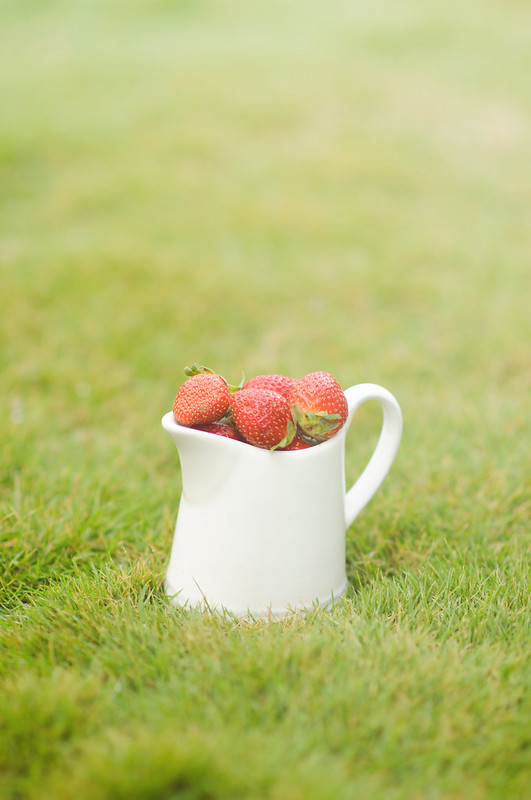 Day 23.365 - Strawberries on Grass