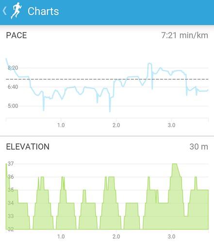 Runkeeper charts