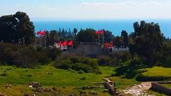 Palácio de Cartago