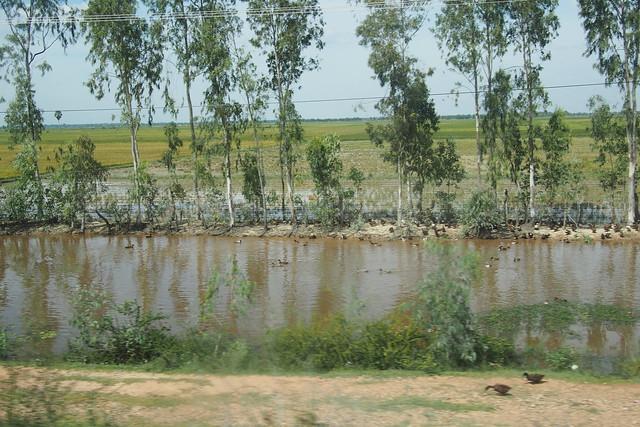 duck ponds, Phnom Penh, Cambodia