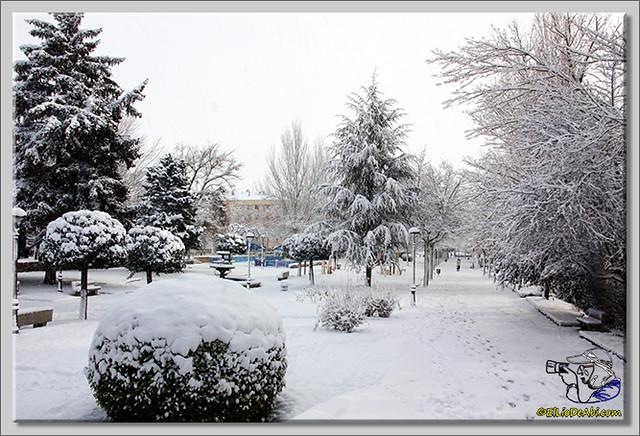 15 Primera nevada en Briviesca 2015