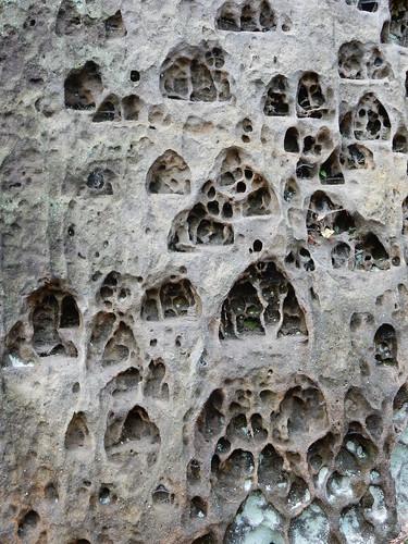 Ve skalním městě u Střezivojic