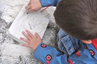 Excavating Dinos