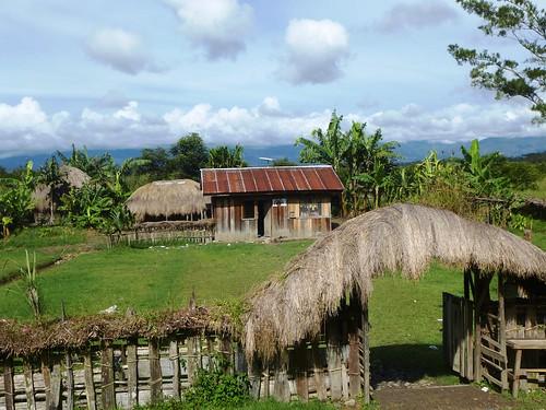 Papua13-Wamena Nord-Wosilimo (37)