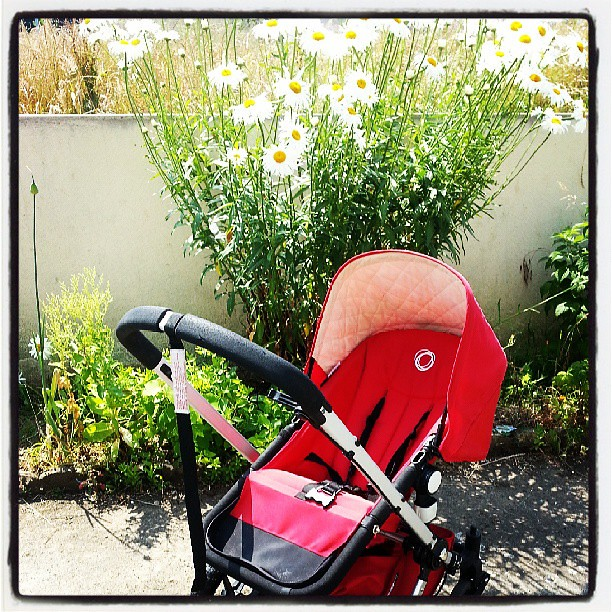 Ma maman a réparé ma bugaboo ♥♡♥ @bugaboohq #bugaboo #poussette #vacances #blog #blogueuse #ourlittlefamily #family #france #famille