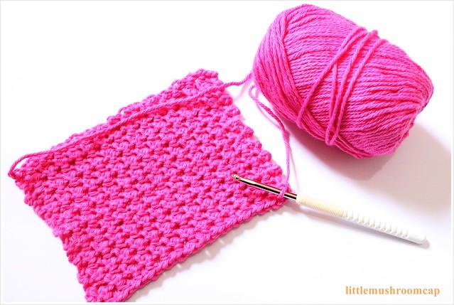 crochet dishloth 1