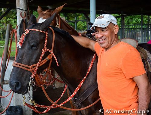 Albertos Horse