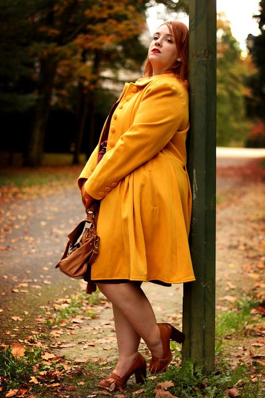 Aux couleurs d'automne 5