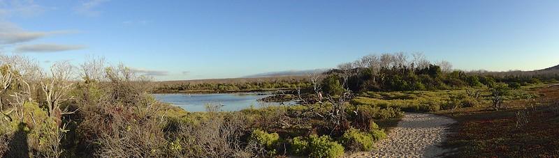 galapagos rabida cerro dragon 150
