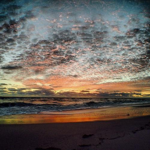 beach square sebastian florida squareformat melbournebeach iphone5 iphoneography instagramapp uploaded:by=instagram foursquare:venue=4c26a3e1136d20a19dc5e561 ilobsterit
