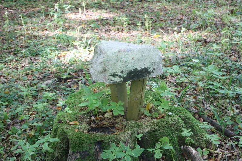 Frisbjär stone... art?
