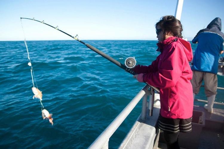 Fishing in New Zealand!