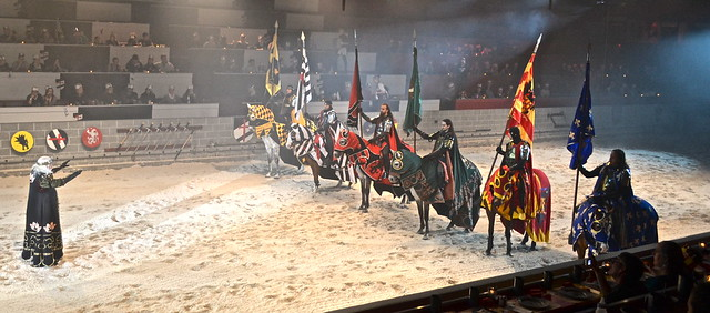 Medieval  Times Orlando Florida - addressing the King