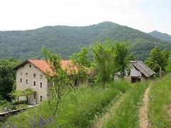Foto per 1. Da Case Senozecar vista sul versante Est del monte Globocak.