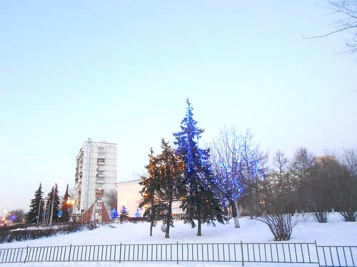 синие деревья экспозиция макс
