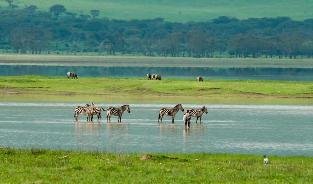 ngorongoro conservation area map northwest tanzania