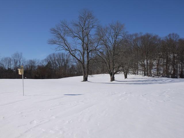 月, 2014-02-17 15:05 - Rockefeller Park