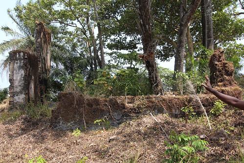 island sierraleone bunce