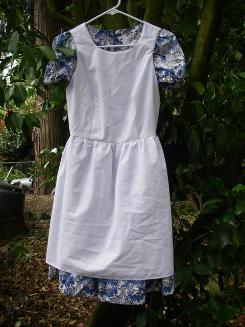 Alice dress (inside-out)