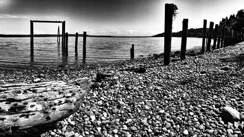 bw monochrome vashonisland iphone project365 500px 127365 iphone365 iphoneography snapseed