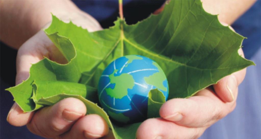 加入【綠意交換】,為您的親朋好友獻上包山包海的祝福