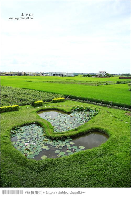 【彰化大村景點】大村雙心池塘/平和夕照平台@浪漫必遊‧約會拍照的好去處~7