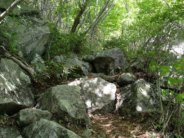瓢ヶ岳 登山道