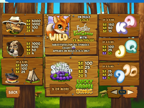 free Foxy Fortunes free spins feature