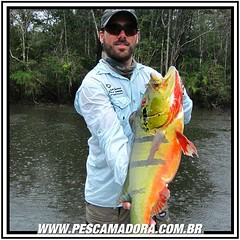 Feriado chegando e o pensamento vai longe. Boa pescaria para quem vai pescar.  #pescaamadora #pescador #pescaesportiva #pesqueesolte #amazonia #tucunareaçu #tucunare #tucuna #baitcasting #baitcast #fishinglure #fishing #flyfishing #fly #amazon #river #mon