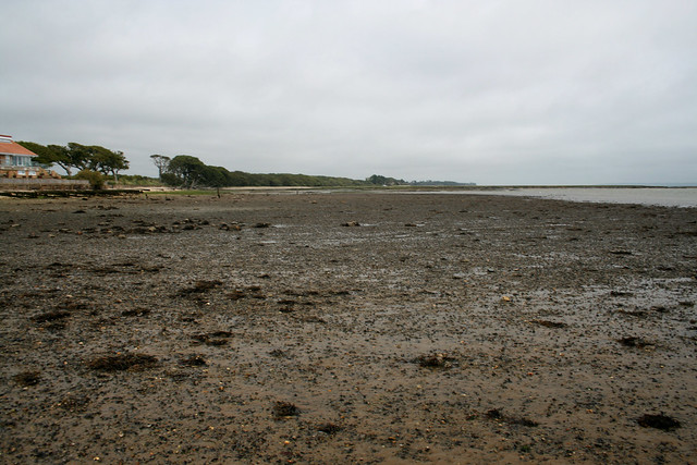 The shore at Tanners Lane, New Forest